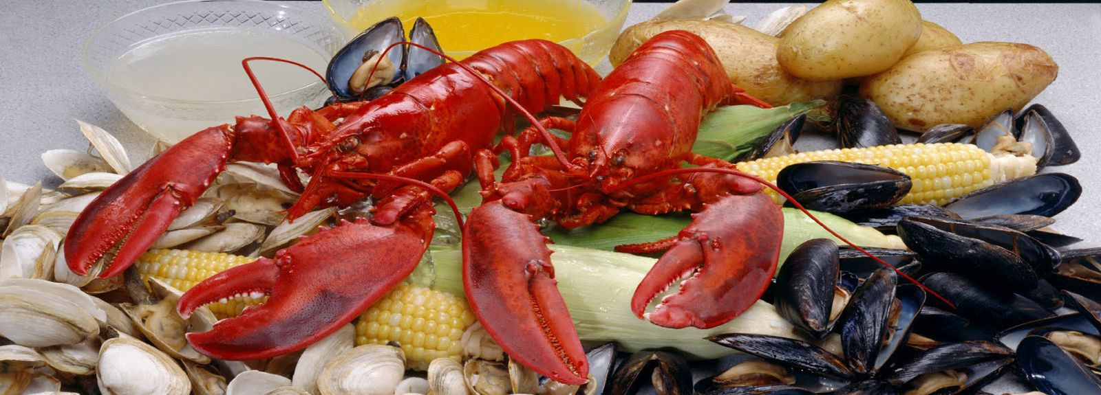 Maine Lobster Bakes